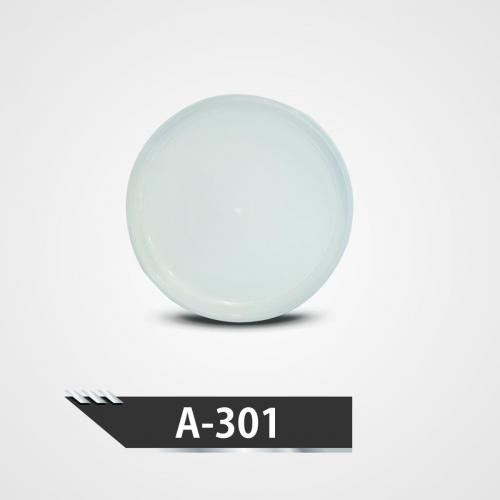 A-301